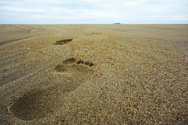 footsteps-732128_640