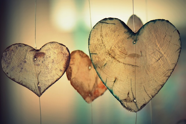 heart-700141_640(1)