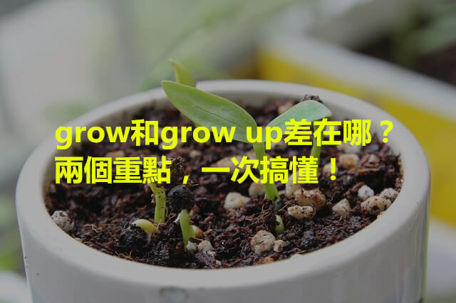 sprout-790155_640_副本