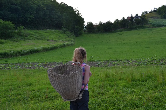 woman-with-basket-898239_640
