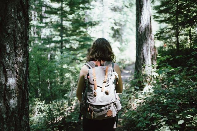 hiker-918704_640