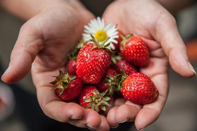 strawberry-1176410_640