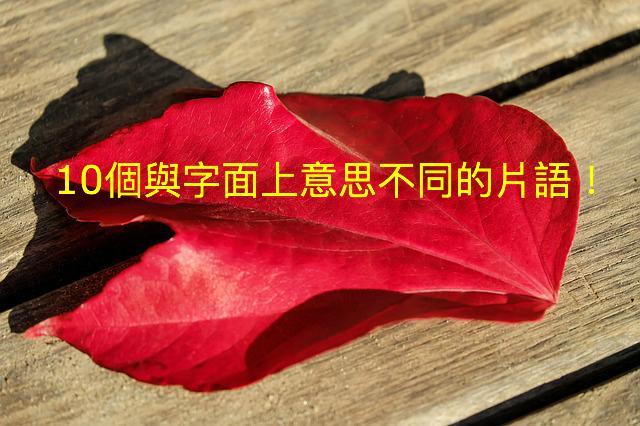 autumn-1801553_640